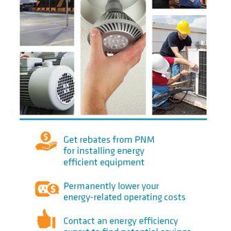 Business Energy Efficiency Programs brochure